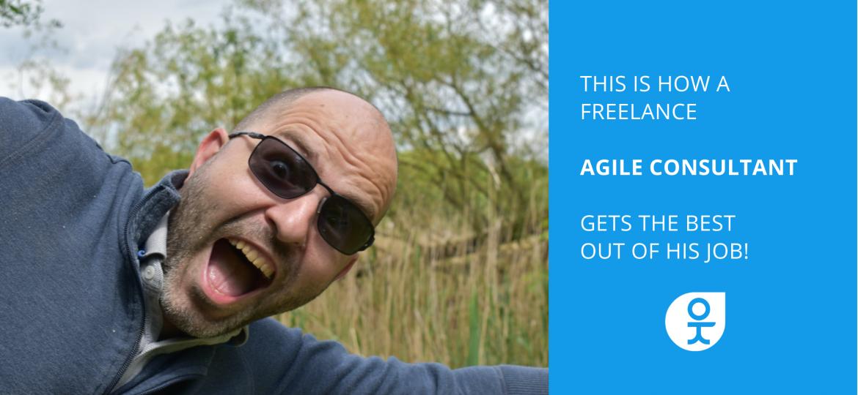 freelance agile consultant